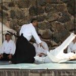 Sanshukan Aikido demonstration 2008 (photo by Kevin Dika)